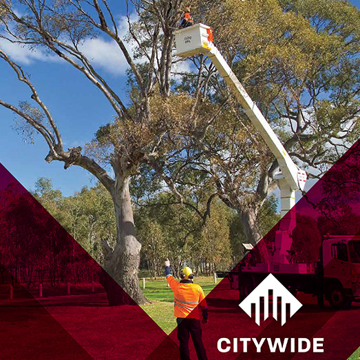 Citywide 2018 Annual Report