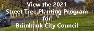 2021 Brimbank STIP banner image COW_045